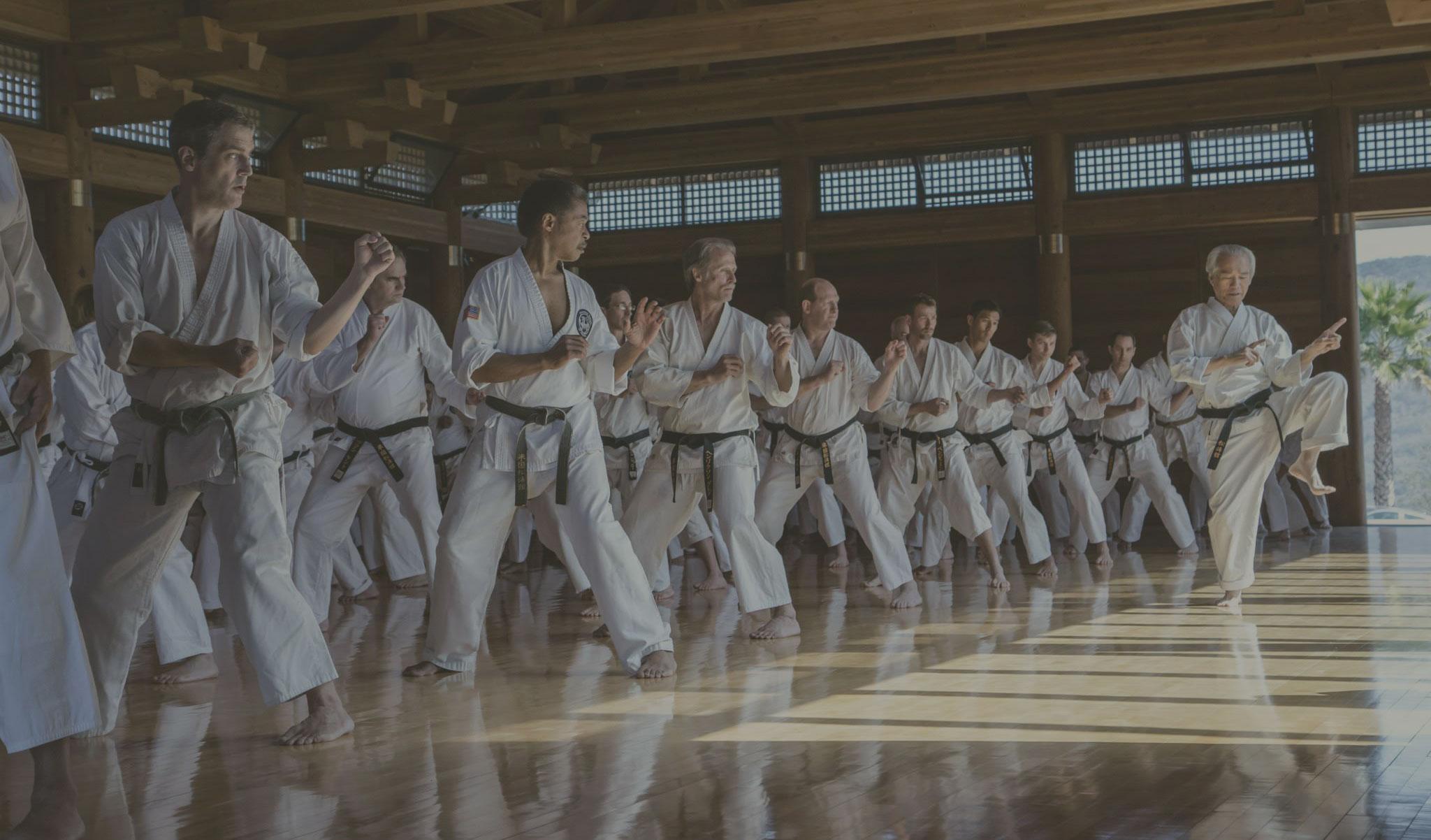 Benefits of Karate Practice – Shotokan Karate of America
